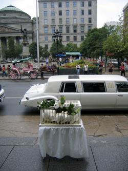 Свадебный маршрут по москве
