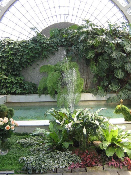 Оранжерея у Таврического сада